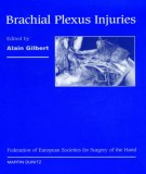 Injuries in brachial plexus: Part 2