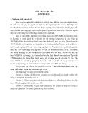 Tóm tắt Luận văn Thạc sĩ Quản trị kinh doanh: Phát triển kinh doanh của Tập đoàn Viễn thông Quân đội trên khu vực Đông Nam Á