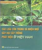 Ebook Các loại côn trùng và nhện nhỏ gây hại cây trồng phát hiện ở Việt Nam (Quyển 1): Phần 2