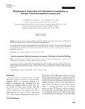 Morphological, anatomical and palynological investigation on Sonchus erzincanicus Matthews (asteraceae)