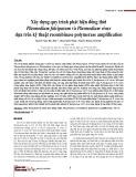 Xây dựng quy trình phát hiện đồng thời Plasmodium falciparum và Plasmodium vivax dựa trên kỹ thuật recombinase polymerase amplification