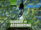 Lecture Survey of Accounting (First edition): Chapter 1 – Kimmel, Weygandt