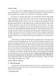 Báo cáo tổng kết đề tài: Nghiên cứu kỹ thuật ghép nhãn lên vải, duy trì thu nhập hàng năm của người làm vườn tại tỉnh Bắc Giang và Hải Dương
