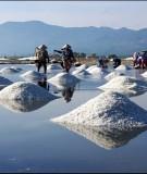 Giáo trình Kỹ thuật sản xuất chế biến muối chất lượng cao: Phần 1