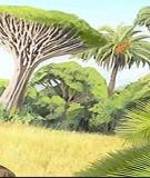 Giáo trình Phân tích thực vật: Phần 2