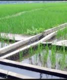 Giáo trình Quy hoạch và thiết kế hệ thống thủy nông: Phần 1