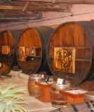 Giáo trình Công nghệ sản xuất rượu: Phần 1