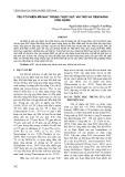 Yếu tố phiên mã NAC trong thực vật: Vai trò và tiềm năng ứng dụng