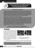 Khảo sát ảnh hưởng của sự phân bố lỗ rỗng tới sự khởi tạo và phát triển vết nứt bằng phương pháp trường pha