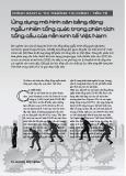 Ứng dụng mô hình cân bằng động ngẫu nhiên tổng quát trong phân tích tổng cầu của nền kinh tế Việt Nam