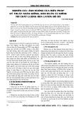 Nghiên cứu ảnh hưởng của biện pháp kỹ thuật nhân giống, bảo quản củ giống tới chất lượng hoa Layơn đủ 09