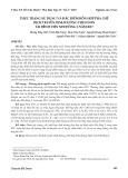 Thực trạng sử dụng và đặc điểm hỗn hợp pha chế dịch truyền dinh dưỡng theo đơn tại Bệnh viện Nhi đồng 2 năm 2017