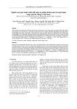 Nghiên cứu quá trình chiết chất màu tự nhiên Betacyanin từ quả thanh long ruột đỏ trồng ở Việt Nam