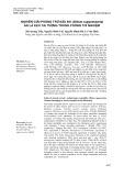 Nghiên cứu phòng trừ sâu đo (Biston suppressaria) ăn lá keo tai tượng trong phòng thí nghiệm