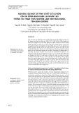 Nghiên cứu một số tính chất gỗ cơ bản của 05 dòng bạch đàn lai nhân tạo trồng tại trạm thực nghiệm lâm sinh Bàu Bàng, tỉnh Bình Dương