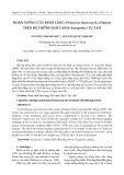 Nhân giống cây đinh lăng (Polyscias fruticosa (L.) Harms) trên hệ thống khí canh (aeroponic) tự tạo