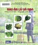 Trồng rau ăn lá và hoa an toàn - năng suất - chất lượng cao: Phần 2