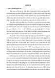 Luận án Thạc sĩ Chính sách công: Thực hiện chính sách pháp luật hôn nhân và gia đình tại huyện Ba Tơ, tỉnh Quảng Ngãi