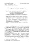 Nghiên cứu tính chất của protein sử dụng hình thức luận Ginzbug - Landau bậc 4