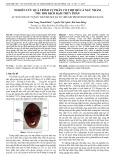Nghiên cứu quá trình tự phân cơ thịt đỏ cá ngừ nhằm thu hồi dịch đạm thủy phân