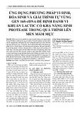Ứng dụng phương pháp vi sinh, hóa sinh và giải trình tự vùng gen 16S rDNA để định danh vi khuẩn lactic có khả năng sinh protease trong quá trình lên men mắm mực