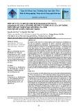 Hiệu quả của vi khuẩn chịu mặn Burkholderia SP. PL9 và Acinetobacter SP GH1-1 lên sinh trưởng và năng suất lúa LP5 trồng trên nền đất nhiễm mặn mô hình lúa tôm ở huyện Mỹ Xuyên, tỉnh Sóc Trăng