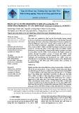 Phân lập và tuyển chọn dòng vi khuẩn Lactobacillus có tiềm năng probiotic từ cây môn ngọt (Colocasia esculenta (L.) schott)