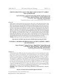 Phương pháp tổng quát tổng hợp chấm lượng tử carbon pha tạp kim loại