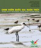 Vườn Quốc gia Xuân Thủy và các loài chim: Phần 1
