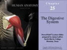 Lecture Human anatomy (6/e): Chapter 25 - Martini, Timmons, Tallitsch