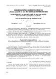 Đánh giá sinh trưởng và năng suất của nấm sò vua (Pleurotus eryngii (DC.:Fr.) trên nguyên liệu nuôi trồng khác nhau