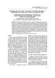Biến động quần xã thực vật phù du vùng biển Ninh Thuận - Bình Thuận giữa năm sau El Niño và năm trung tính