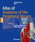 The peripheral nerves and atlas of anatomy: Part 1