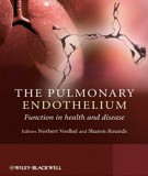Function in health and disease in the pulmonary endothelium: Part 1