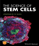Stem cells in the science: Part 1
