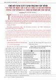 Chỉ số năng lực cạnh tranh cấp tỉnh và chỉ số hiệu quả quản trị và hành chính công cấp tỉnh của thành phố Hồ Chí Minh