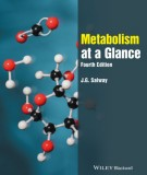Introduce of metabolism at a glance (Fourth edition): Part 1