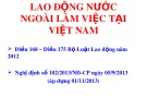 Bài giảng về Lao động nước ngoài làm việc tại Việt Nam (Điều 168 - 175 Bộ luật Lao động 2012)