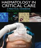 A practical handbook of haematology in critical care: Part 1
