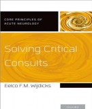 Consulting and solving critical: Part 2