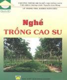 Cẩm nang trồng cao su: Phần 2