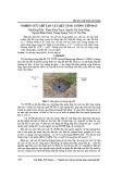 Nghiên cứu chế tạo vật liệu tăng cường tiếp đất