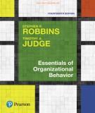 Organizational behavior and essentials factors: Part 1