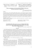 Xác định nấm Colletotrichum truncatum gây bệnh thán thư trên thanh long và hiệu quả của dịch trích thảo mộc lên sự phát triển của nấm