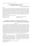 Ảnh hưởng của phân hữu cơ vi sinh kết hợp nấm Trichoderma đến dinh dưỡng và mật độ nấm Fusarium spp. của đất vườn cam sành