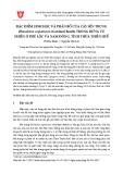 Đặc điểm sinh học và phân bố của cây Sến trung (Homalium ceylanicum (Gardner) Benth) trong rừng tự nhiên ở Phú Lộc và Nam Đông, tỉnh Thừa Thiên Huế
