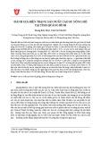 Đánh giá hiện trạng sản xuất cao su nông hộ tại tỉnh Quảng Bình