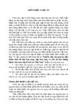 Tóm tắt Luận án tiến sĩ Y học: Nghiên cứu căn nguyên, đặc điểm dịch tễ học lâm sàng, cận lâm sàng và yếu tố tiên lượng bệnh viêm não cấp ở trẻ em Việt Nam