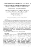 Evaluation of EBNA-1 (Epstein-Barr virus nuclear antigen-1) gene prevalence in nasopharyngeal carcinoma in Vietnamese patients