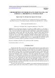 Chemisorption of enrofloxacin on rutile TiO2 (110) surface: A theoretical investigation